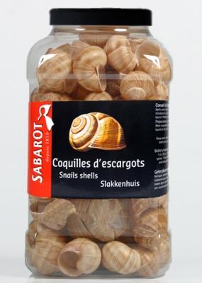 ESSHEL 36's Tres Gros Escargot Shells
